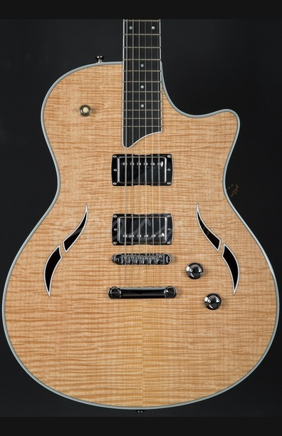 dan guitar dien taylor t3 natural