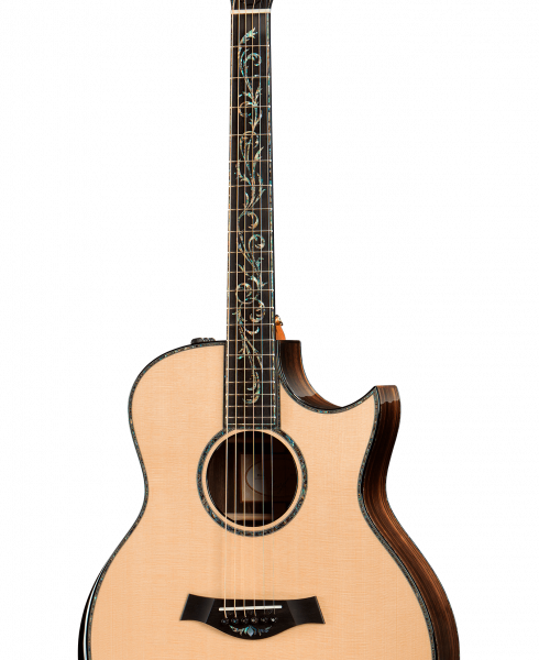 dan guitar Taylor PS16 CE 4