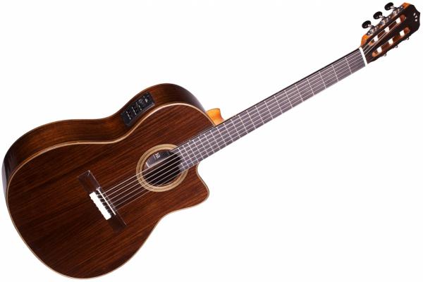 Bạn đã biết đến những biến thể của đàn guitar 1