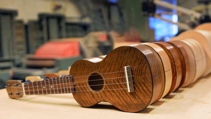 Những thông tin cơ bản về đàn ukulele nên biết 1